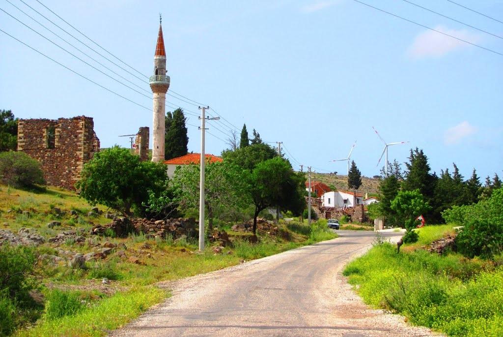 Zeytineli Köyü